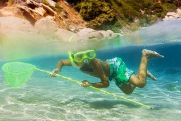 A Child In Snorkeling Gear Gets Ready To Use His Scoop Net