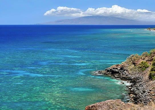 Coral_Gardens_Maui_Snorkeling_Secrets