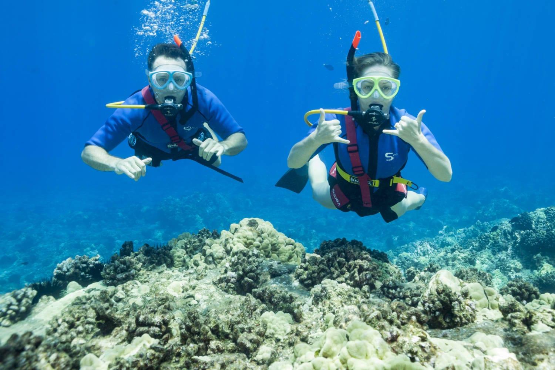 SNUBA VS SNORKELING - Four Winds Maui Snorkeling