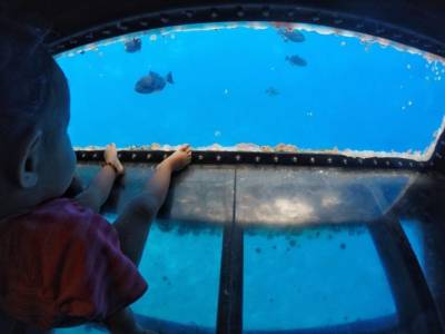 GLASS BOTTOM VIEWING ROOM – FOUR WINDS II