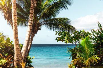 Hawaiian Beach Scenery