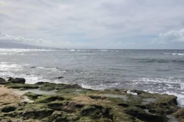 Maui Ocean Safety Tips