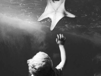 Maui Ocean Center – Maui's One And Only Aquarium