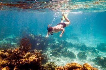 Top 10 Snorkeling Spots In Maui