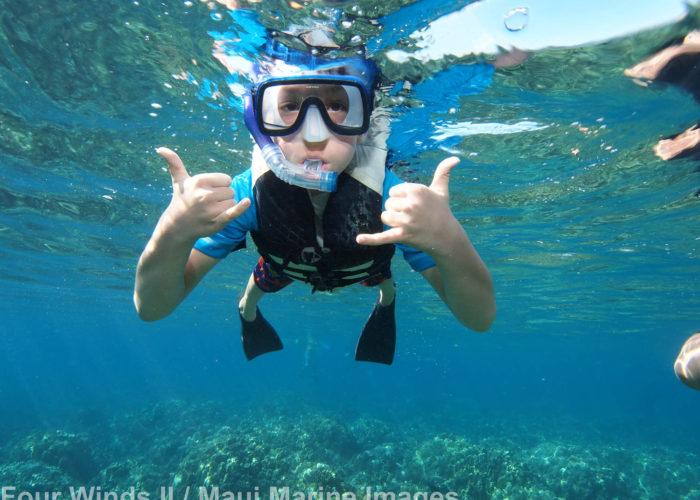 Snorkeling Maui Molokini